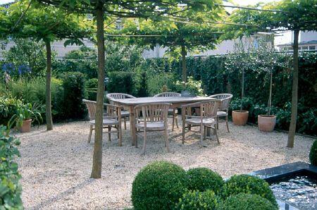 17 beste afbeeldingen over dakplatanen op pinterest tuinen planes en zoeken - Wijnstokken pergola ...