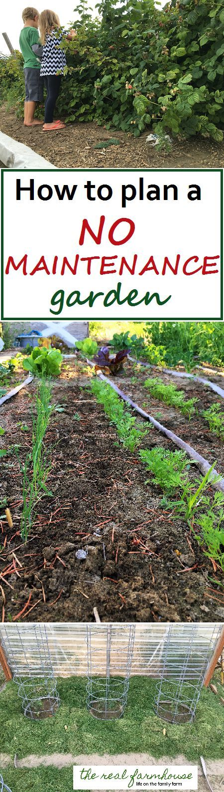 Great advice for planning a no maintenance garden! 5 secrets and how to implement them in the garden.