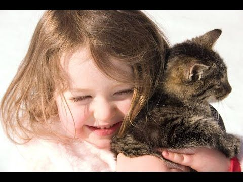 Pets Australia Local Dogs Cats Birds https://www.youtube.com/watch?v=AYRjMOMhmqA  Free Hot Classifieds Beautiful ADs Special Services  http://thehotwire.org