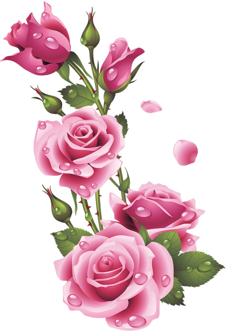 Clipart Flowers Flowers Clipart Pinterest Flowers Decoupage And Decoupage Paper: flower clipart