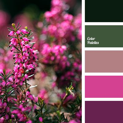 Dusty pink bright pink color matching dark green for What color matches with purple