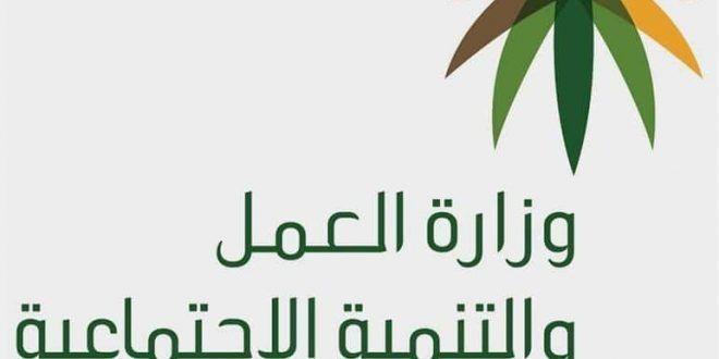 استعلام المساعدة المقطوعة شهر ذو القعدة 1439 برقم السجل أو رقم الطلب Herbs