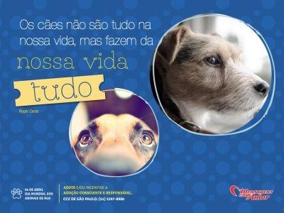 Dia 4 de abril, Dia Mundial dos Animais de Rua!!    Os cães não são tudo na…