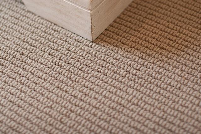 Durable Carpet Carpet Vidalondon
