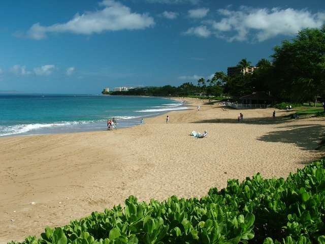 Maui Beach Front Condo Al Accommodations Oceanfront Resort
