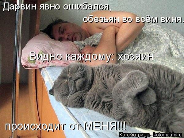 Kotomatritsa 2014. Discussion sur LiveInternet - service russe Diaries en ligne