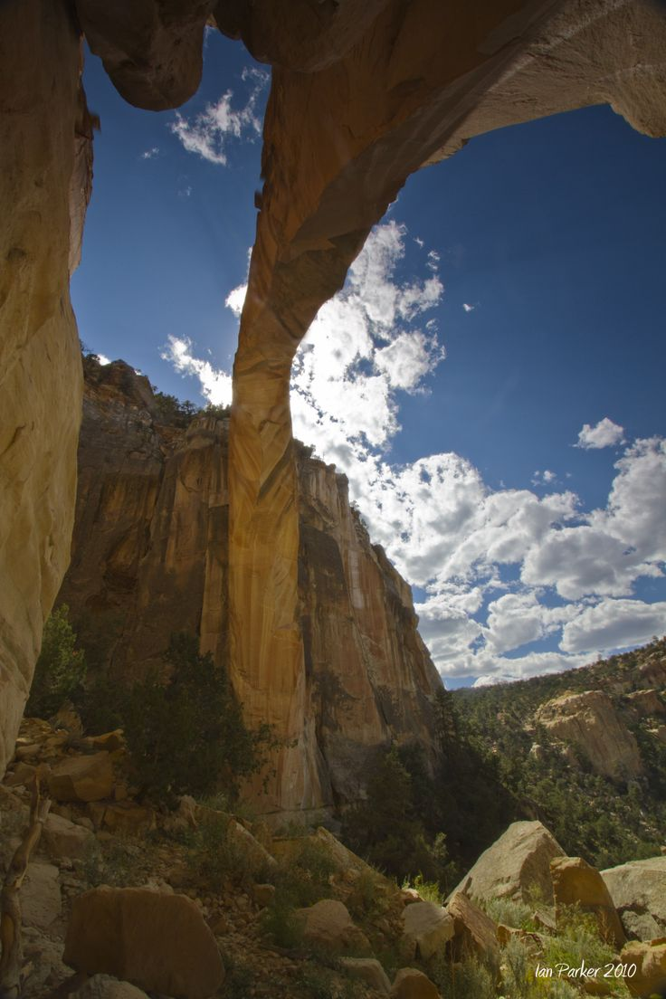1318 Best New Mexico Images On Pinterest New Mexico