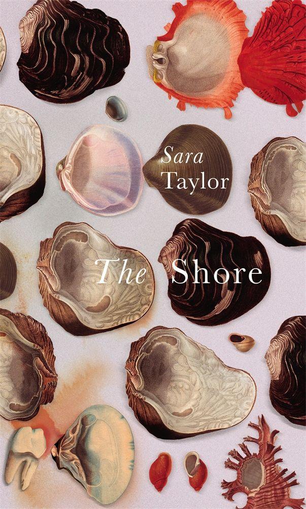 The Shore - Sara Taylor.