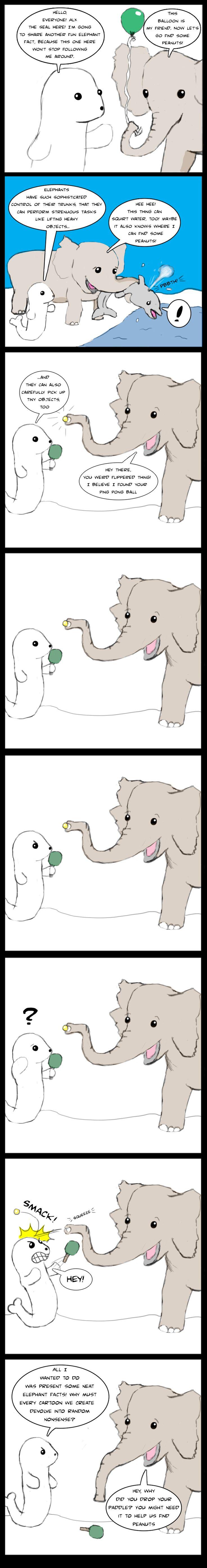 best 25 elephant facts ideas on pinterest elephants