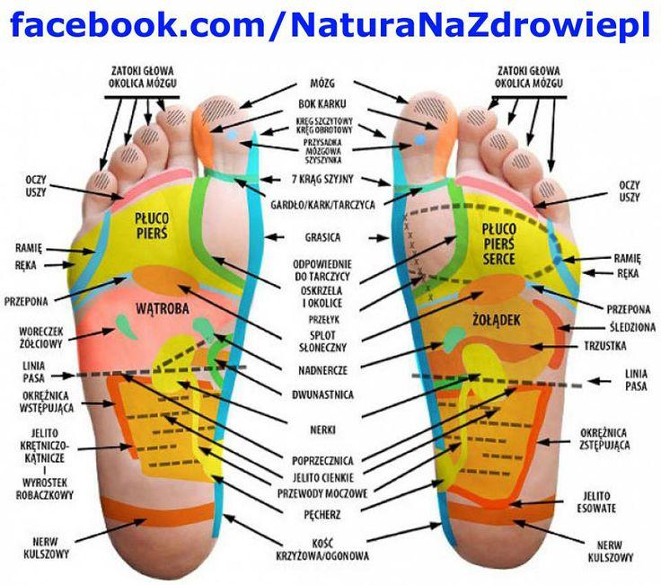 Masaż stóp przynosi ulgę i ukojenie po całym dniu. Sprawia, że nasze dobre samopoczucie szybko się poprawia i powraca. Można go wykonywać własnymi dłońmi, jak i poprosić partnera czy też iść do kosmetyczki na pedicure i poprosić o masaż stóp tuż przed zabiegiem. Masaż stóp jest wykonywany również specjalnym masażerem. Można go wykonywać tak, często jak tego potrzebujemy i na różne sposoby.