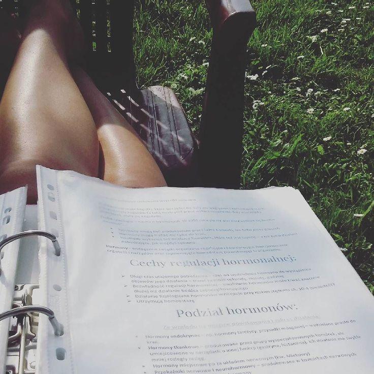 Dwa najgorsze #egzaminy jeszcze przed! #sesja #student #egzamin #biologia #psychologia #studia #studygram #summer #summertime #studiapsychologiczne #studiapsychologia