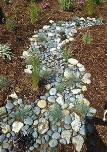 Drought Tolerant Landscape - - Yahoo Image Search Results