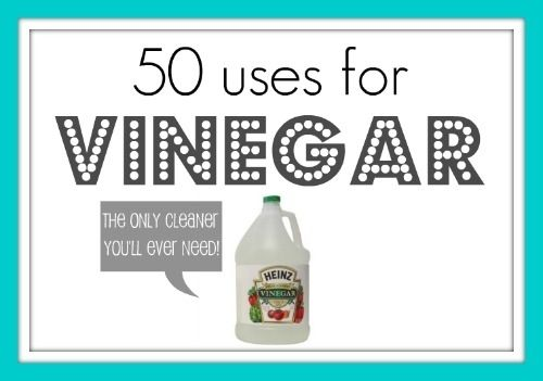 Note: white vinegar kills 99% of bacterias, 82% of molds and +80% of viruses. You can use it with tea tree oil, hydrogen peroxide, or baking soda to increase its antibacterial effectiveness. However, hydrogen peroxide and vinegar should be applied separately, not mixed together. never mix bleach with vinegar— it creates a dangerous chemical reaction.