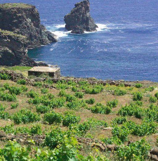 Pantelleria Island, Italy • 4.51 km from city