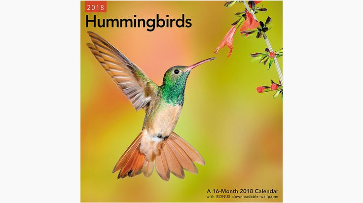 Mead Hummingbirds Wall Calendar  (LME202)