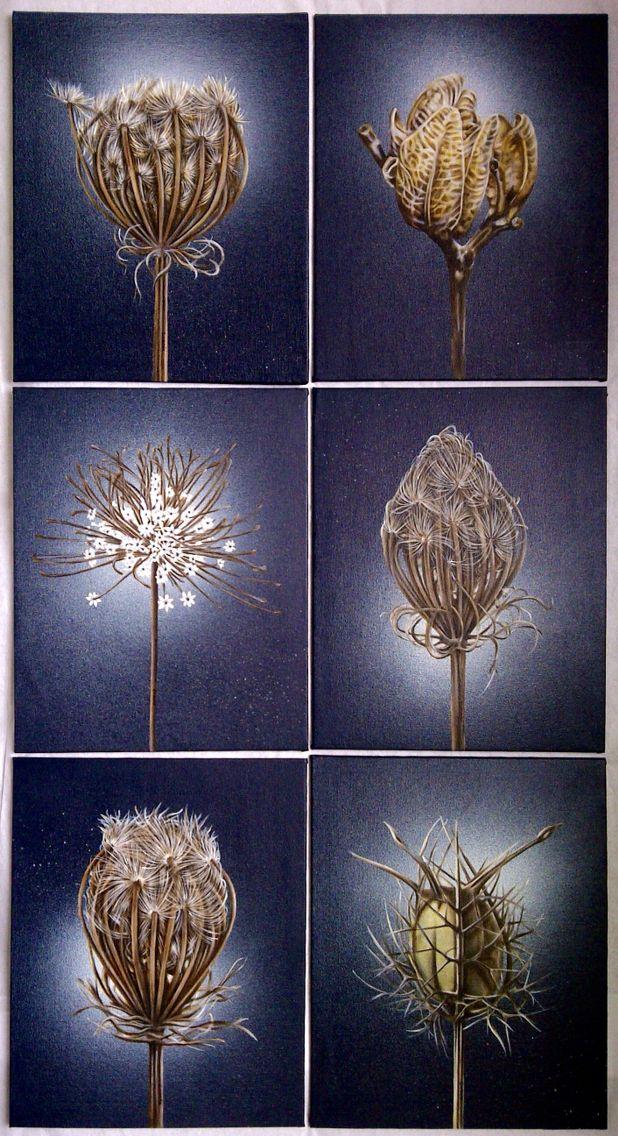 Botanical Series. Oil on canvas
