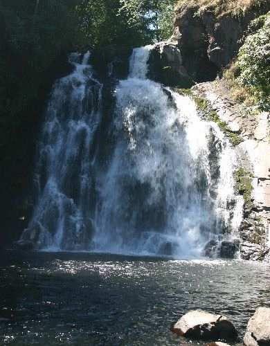 Young's River Falls - near Astoria, Oregon