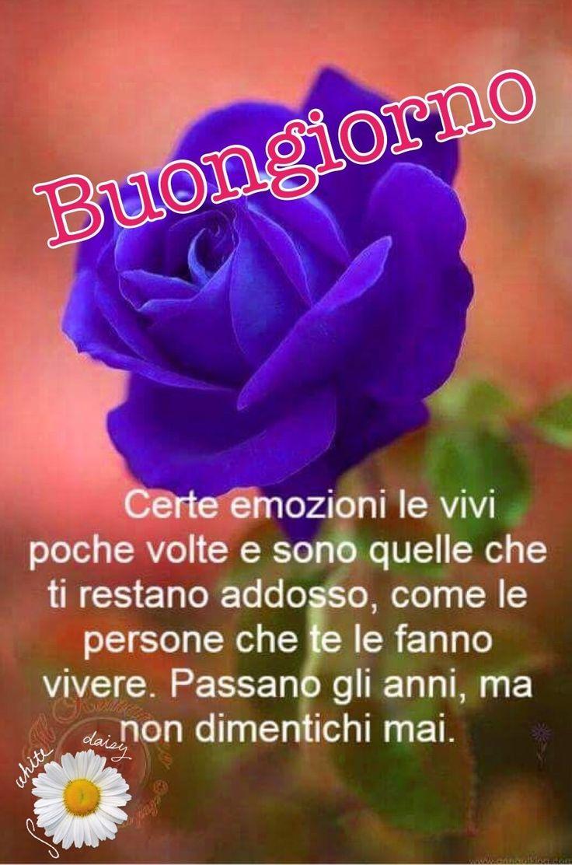 http://ift.tt/2v97jO5 Frasi di buongiorno sms di buongiorno messaggi di buongiorno buongiorno per te bongiorno per whatsa
