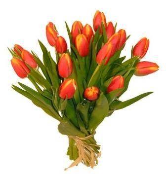 flores para regalar el 8 de marzo dia de la mujer COP$ 120.000