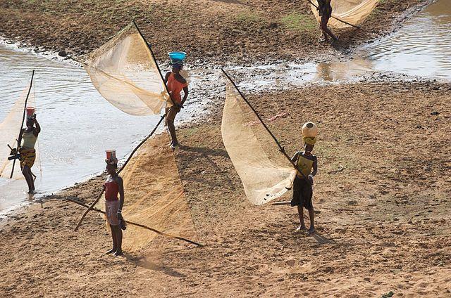Pescadoras.  Río Niger, Guinea, África.  f. Julien Harneis