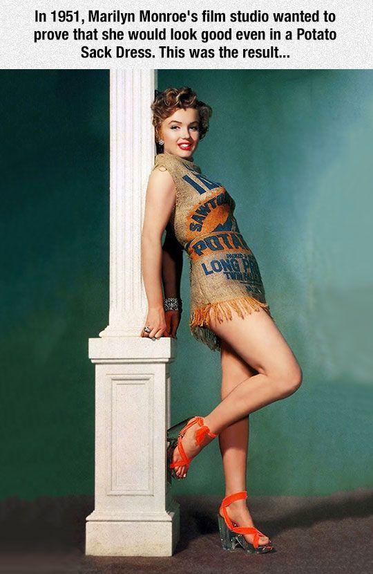 The Amazing Marilyn