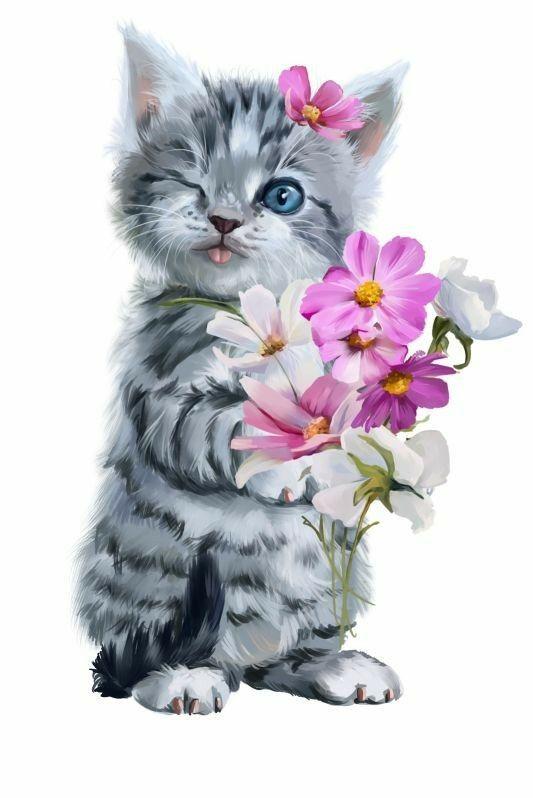 Доброе утро открытки кошки