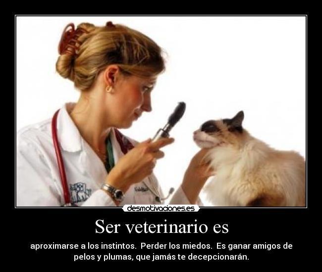 unam veterinaria - Buscar con Google