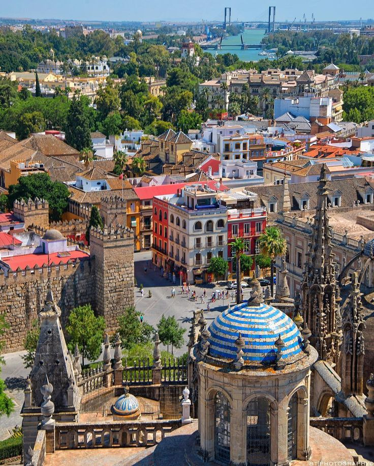 have you climbed to the peak of #seville cathedral and gazed over the colorful sun-kissed city below?