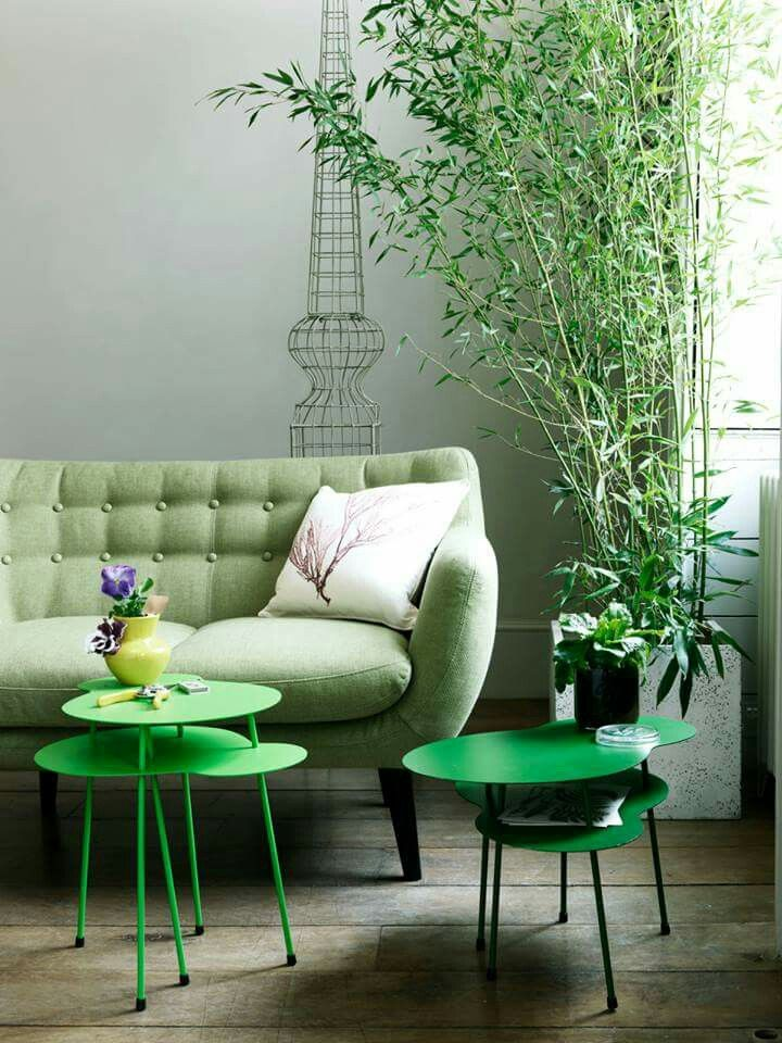 Bamboo Table, Creative Photography, Sofas, Nests, Lifestyle, Green, Tables,  Chairs, Interior