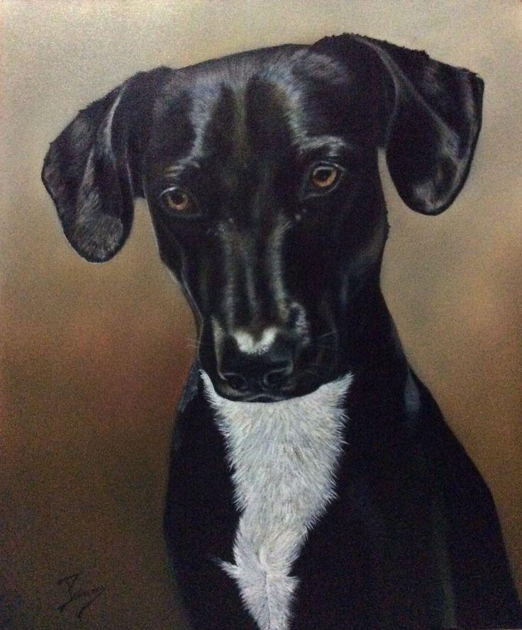 Encargo terminado,retrato canino