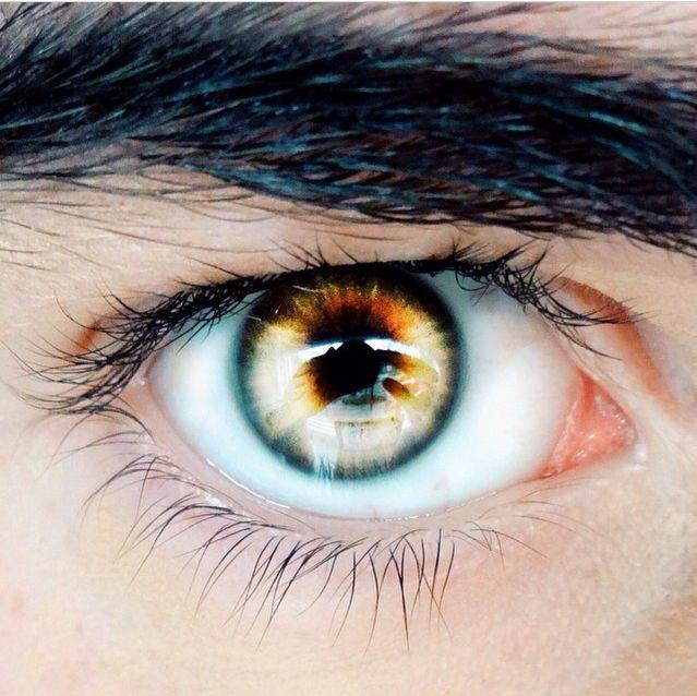 yellow eyes - photo #34