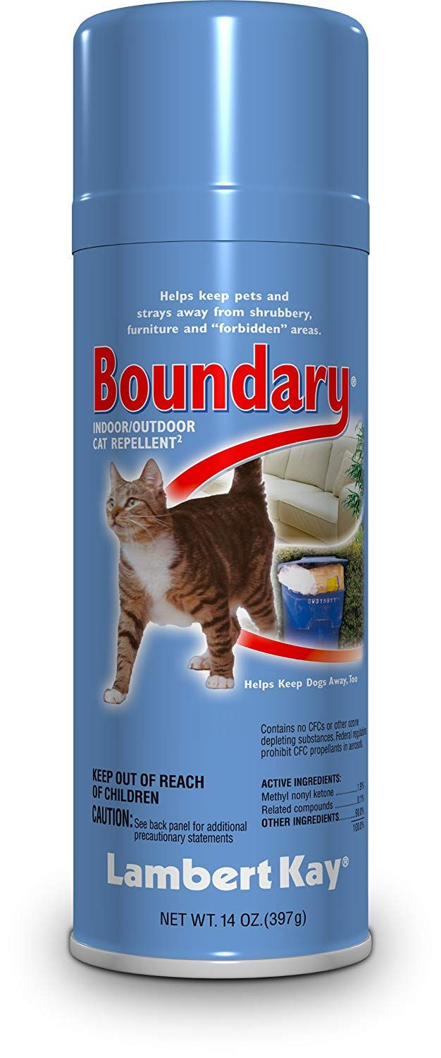 Lambert Kay Boundary Indoor Outdoor Cat Repellent Aerosol Spray 14 Ounce Very Nice Of You To Drop By Visit Our Image This Is An Affiliate Link