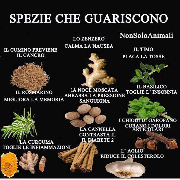 Spezie che guariscono https://www.facebook.com/pages/Laltra-medicina/172480396117917?ref=hl