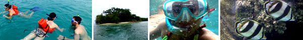 Snorkeling Tour & Hiking Cahuita National Park $60 or $50