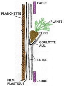 cadre végétal vertical
