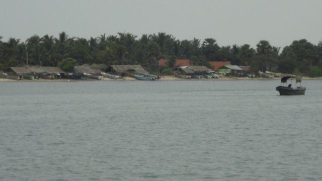 Love This island