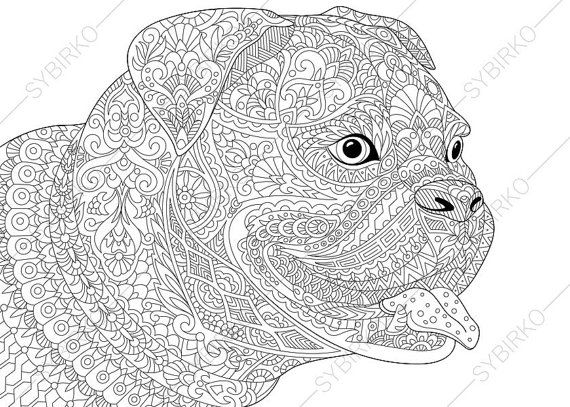 Kleurplaat Bulldog Puppy Bulldog Boxer Dog Coloring Page Adult By