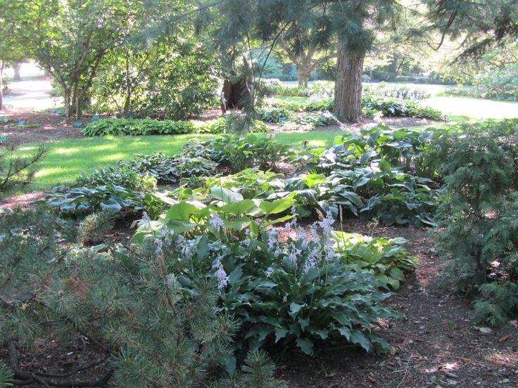 10 best Gardens to Visit images on Pinterest   Botanical gardens ...