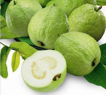 Goiaba Branca: Green Guava, Fruit Salad, Exotic Fruit, Healthy Fruit, Branca Também, 17 Fruta, Buy Guava, Goiaba Branca, Fresh Fruit