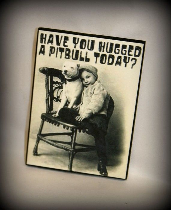 #pitbull, #pit bull: Free Hugs, Bull Terriers, Pit Bull Love, Pitbull, Cute Pet, Families Dogs, Baby Dogs, Vintage Photo, Pit Bull Puppies