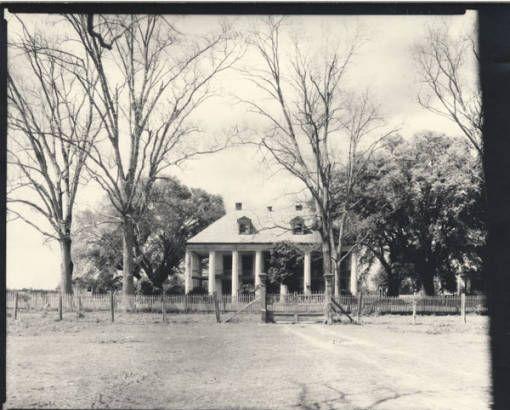 Hermitage Plantation :: Robert Tebbs Photograph