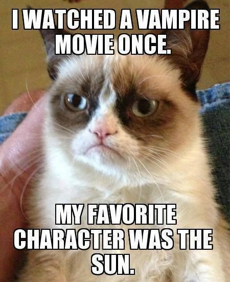 i wantched a movie about a guy who shaved cats....... my fave charactor was the raiser!!!! # im so evil! <----- last person put this lol