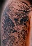 rattlesnake tattoos - Bing Images