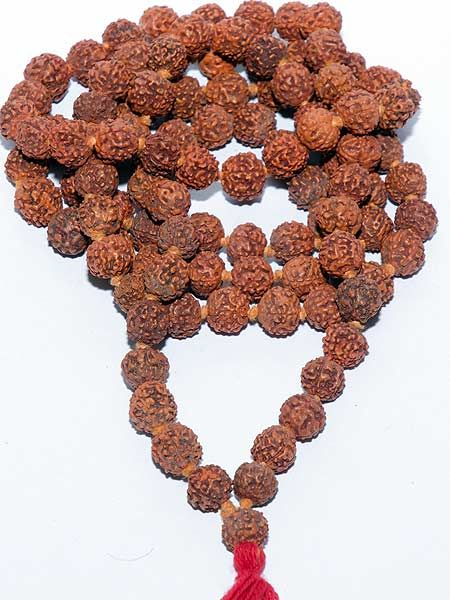 Rudraksha mala with 108 beads