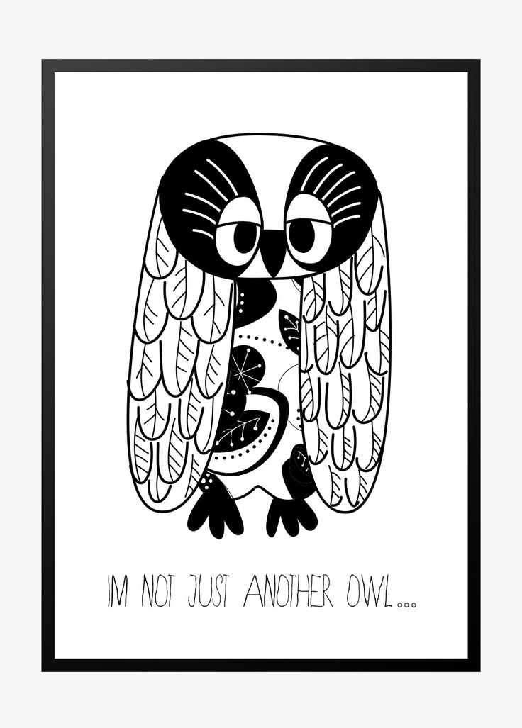 I'm not just another owl