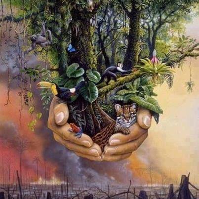 """El hombre es por naturaleza un """"solucionador de problemas"""". Fuimos creados por Dios ya con esa naturaleza en nuestro comportamiento. Desde que somos apenas"""