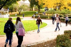 "With personal attention and a professional focus, Western New England University in Springfield MA prepares students for successful careers or grad school through its Colleges of Arts and Sciences, Business, Engineering, Law, and Pharmacy. It's a weekend drive to New York, Boston, and  all of New England.  Click ""collegedata.com"" below to learn more about this college!"