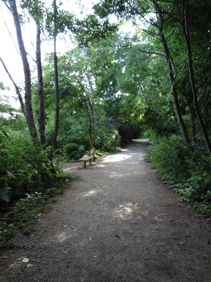 LaSalle Park in Burlington, Ontario, has a lovely stretch of the Waterfront Trail for walking in the woods. #Burlington #Ontario
