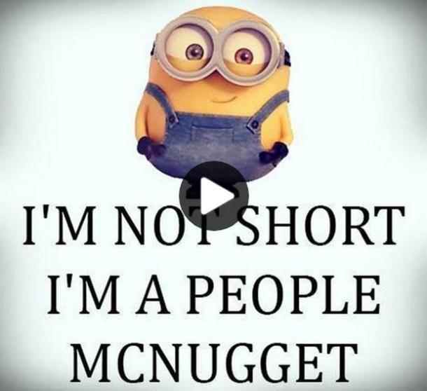 20 Funny Quotes Your Short Girlfriend Will Appreciate To The Fullest Short Girl Quotes Short Funny Quotes Short Humor