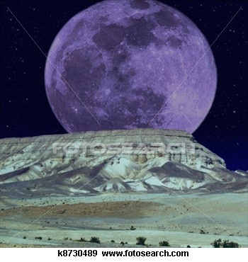 Moonlight melancholy